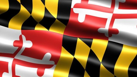 MD Flag Small